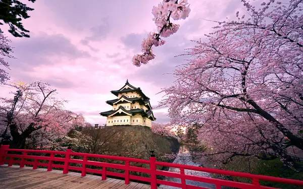 日本留学各阶段费用解析!