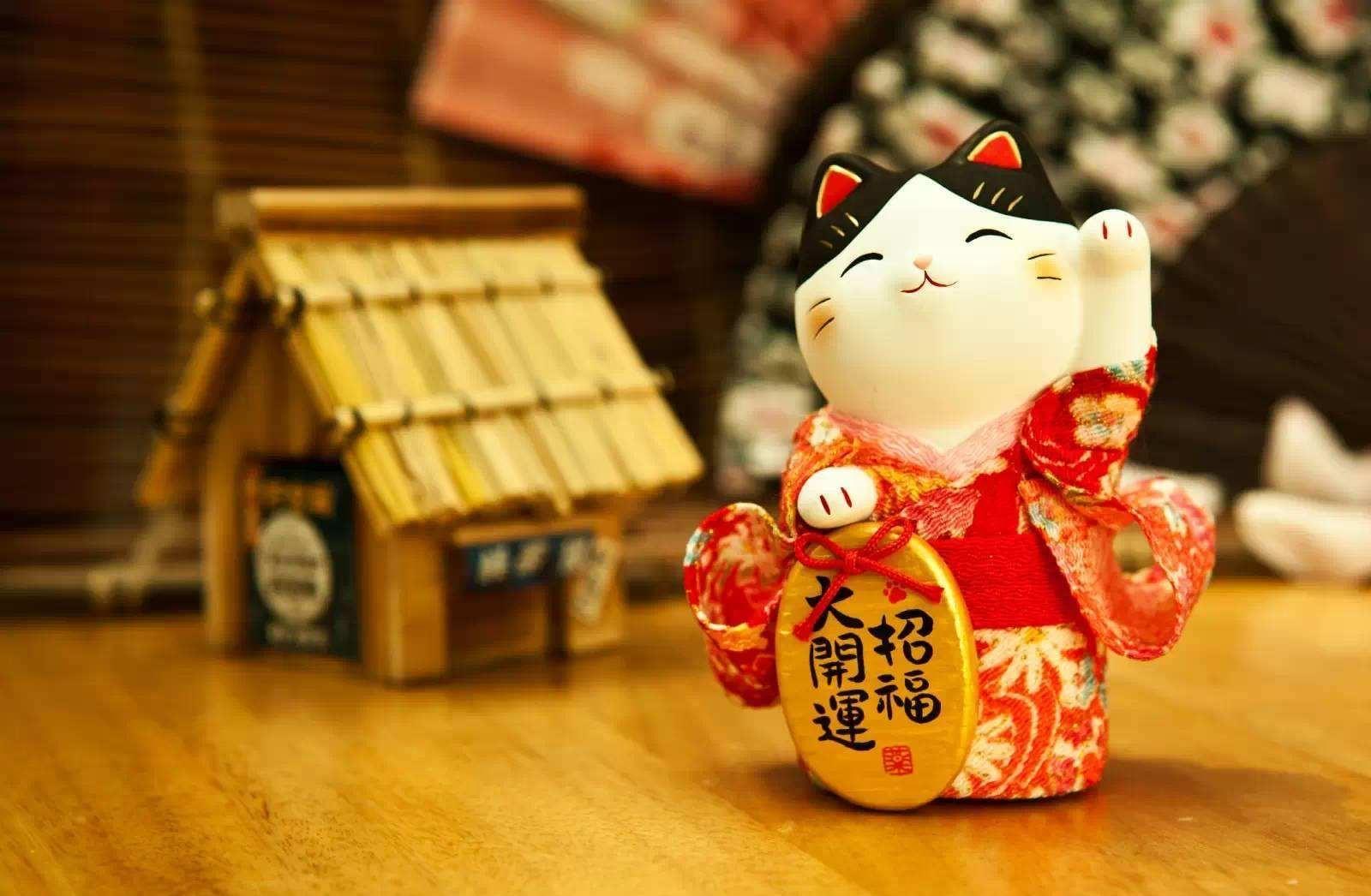 日本传说之:夜神黑猫 行业新闻 - 西诺教育-杭州