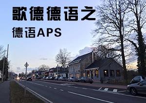 歌德德语之德语APS