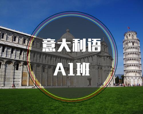 新视线意大利语之意大利语A1班