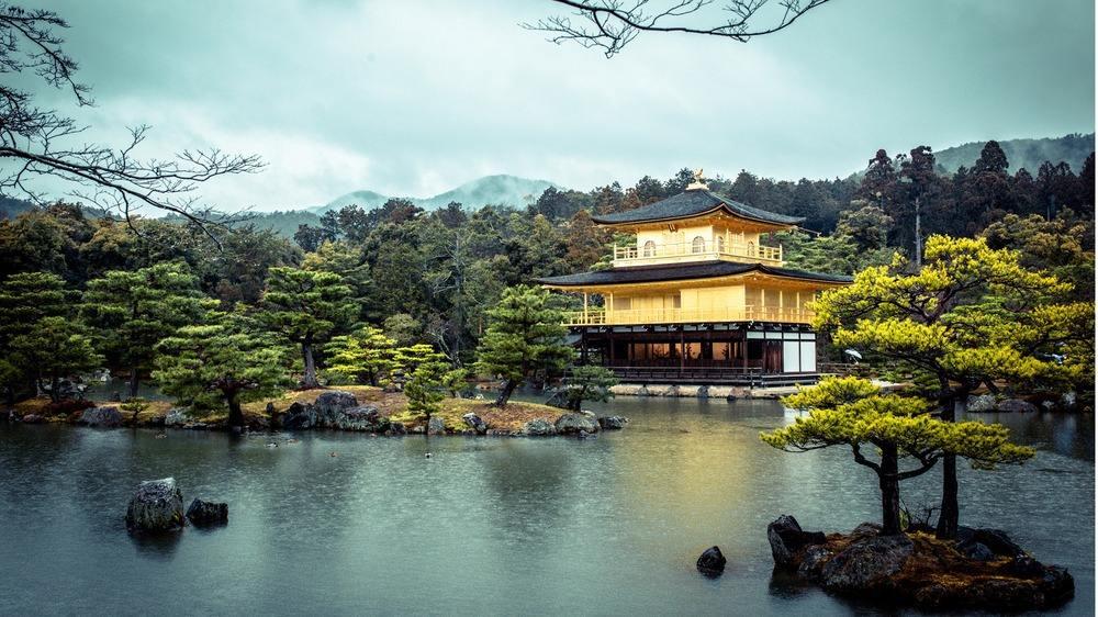 日语培训班口语专题丨西诺带你学旅行口语——酒店住宿篇(日本)