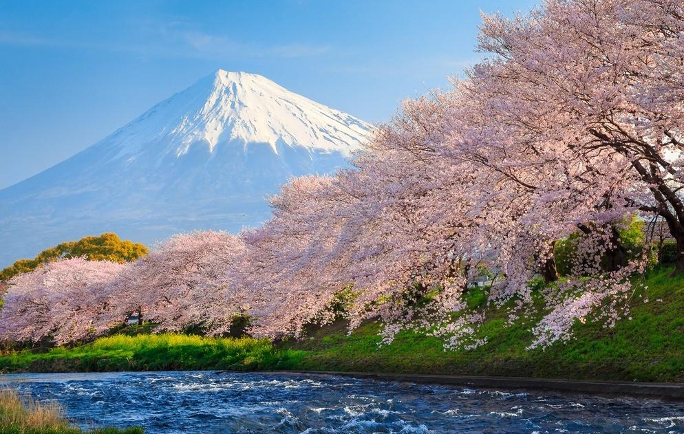 日语中的对不起有哪些表达方式呢?