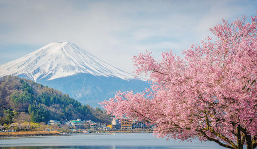 25个日本常用谚语,知道的都是高手
