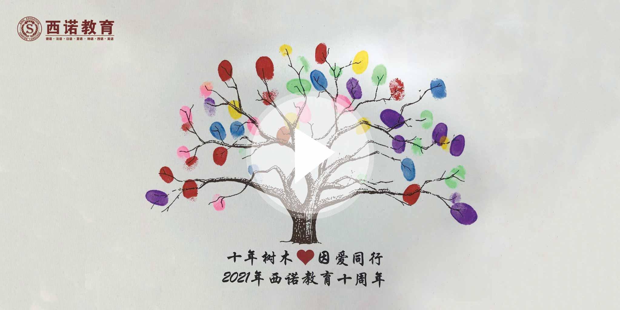 我眼中的西诺的颜色:西诺的生命之树